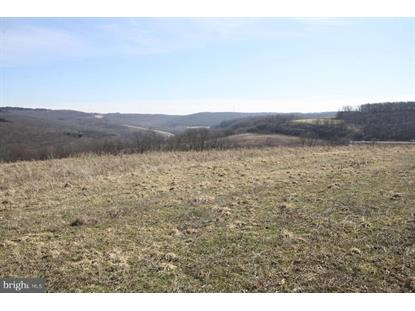1305 PIGS EAR ROAD Grantsville, MD MLS# MDGA132076