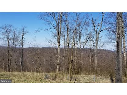 3 & 4 RIDGE RUN ROAD Mc Henry, MD MLS# MDGA132442