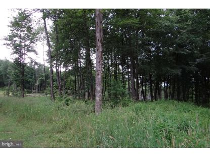 Lot 121 FAIR WAY  Mc Henry, MD MLS# MDGA133010