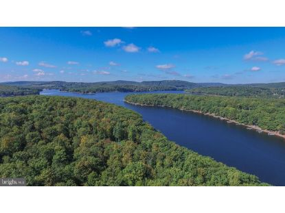 LOT 20 NORTH SHORE WEST SMITH POINTE RD (THOUSAND ACRES)  Swanton, MD MLS# MDGA133822