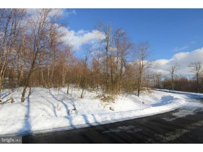 Lot 29 OLD CAMP ROAD  Mc Henry, MD MLS# MDGA134302