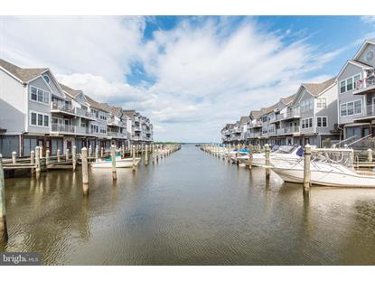Homes for Sale in Canvasback Cove Condominiums, MD – Browse