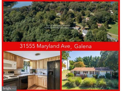 31555 MARYLAND AVENUE Galena, MD MLS# MDKE117136