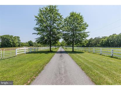 18605 BUCKLODGE ROAD Boyds, MD MLS# MDMC715386