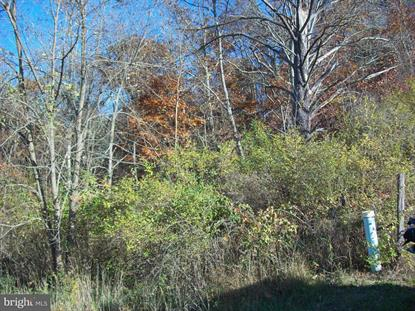 0 SABLE RUN ROAD Hancock, MD MLS# MDWA127070