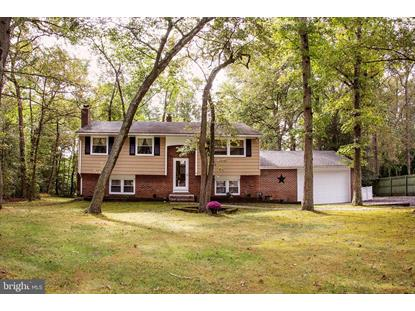 41 OHIO TRAIL Medford, NJ MLS# NJBL358228