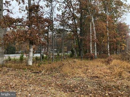Lot #4731+ HARDING HIGHWAY  Malaga, NJ MLS# NJGL250122