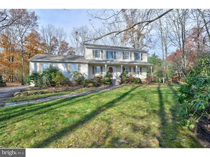 125 HOPKINS ROAD New Egypt, NJ MLS# NJOC101238