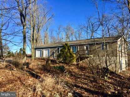 325 BLUE MOUNTAIN RD  Schuylkill Haven, PA MLS# PASK115882