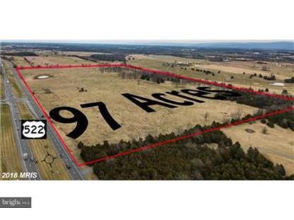 4581 STONEWALL JACKSON HIGHWAY White Post, VA MLS# VACL100008