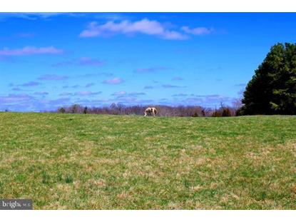 37.08 Acres on BISHOP MEADE  Boyce, VA MLS# VACL111340