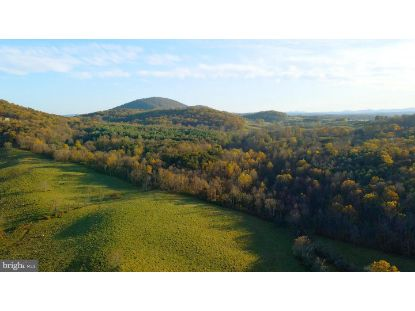 CARRINGTON  Delaplane, VA MLS# VAFQ168744