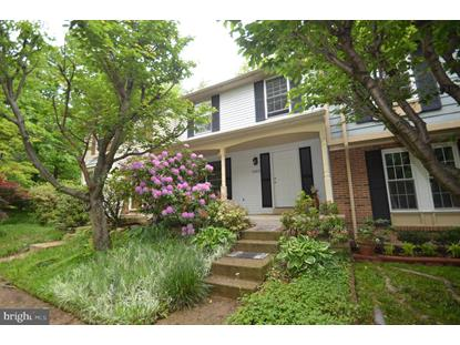 6408 CHANEY COURT Springfield, VA MLS# VAFX1128346