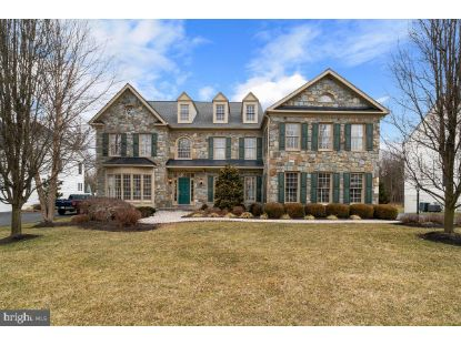 42642 TRAPPE ROCK COURT Ashburn, VA MLS# VALO2000040