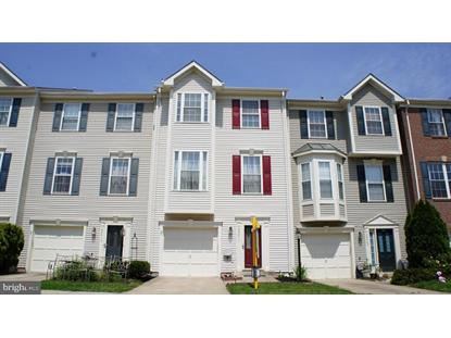 20411 ELM GROVE TERRACE Ashburn, VA MLS# VALO230674