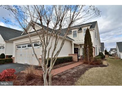 44374 SUNSET MAPLE DRIVE Ashburn, VA MLS# VALO353126