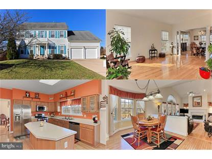 20853 CARDIFF COURT Ashburn, VA MLS# VALO356358