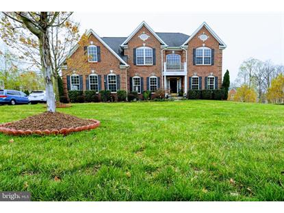 22578 FOREST VIEW COURT Ashburn, VA MLS# VALO381074