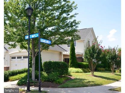 44392 SUNSET MAPLE DRIVE Ashburn, VA MLS# VALO390880