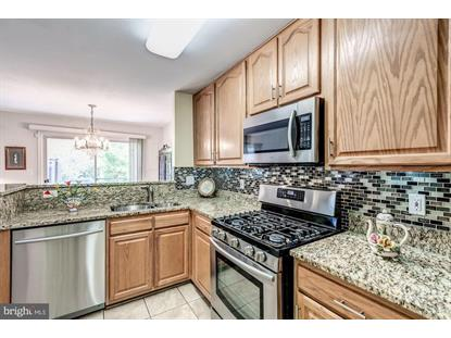 43312 GREYSWALLOW TERRACE Ashburn, VA MLS# VALO392858