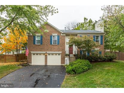 20617 PREAKNESS COURT Ashburn, VA MLS# VALO396742