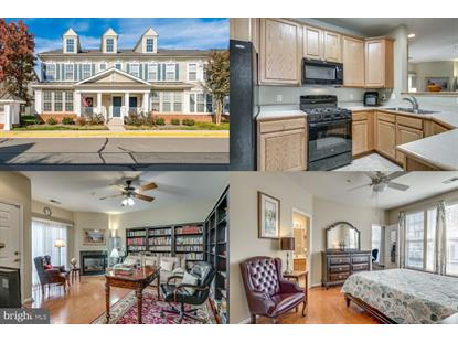 43068 ZANDER TERRACE Ashburn, VA MLS# VALO398674