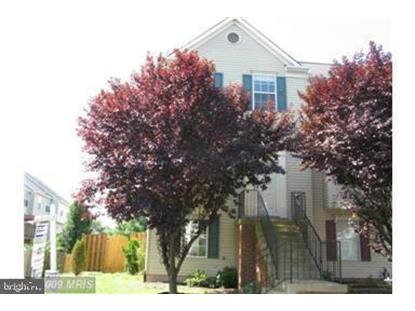 20865 APOLLO TERRACE Ashburn, VA MLS# VALO401424