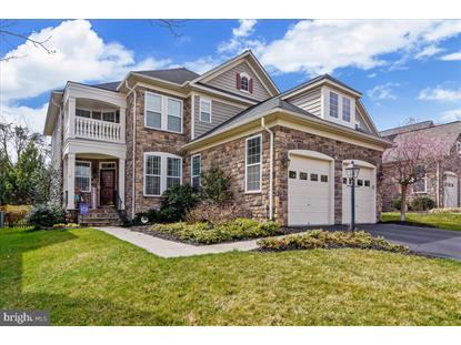 42961 THORNBLADE CIRCLE Broadlands, VA MLS# VALO406066