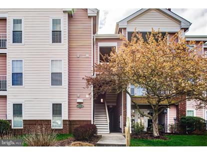 20951 TIMBER RIDGE TERRACE Ashburn, VA MLS# VALO407270