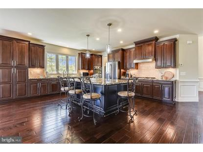 22602 PINKHORN WAY Ashburn, VA MLS# VALO414296