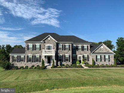 15199 OMEGA COURT Waterford, VA MLS# VALO418840