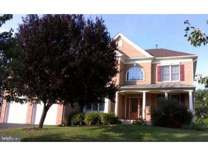 43534 BOWMANTOWN BRIDGE COURT Ashburn, VA MLS# VALO418906