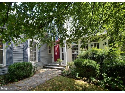 20284 ROSEDALE COURT Ashburn, VA MLS# VALO418954