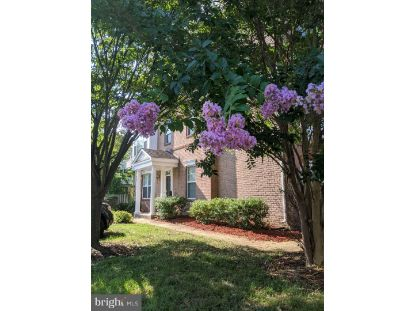 20378 BASS ROCKS TERRACE Ashburn, VA MLS# VALO419766