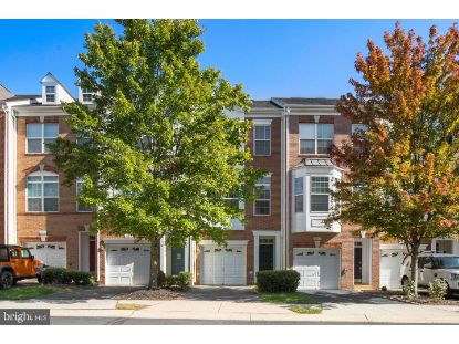 20408 TRAILS END TERRACE Ashburn, VA MLS# VALO421968
