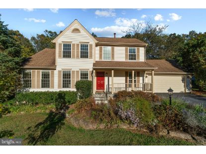 21234 GREENSPRING COURT Ashburn, VA MLS# VALO423620