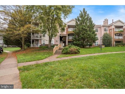 20957 TIMBER RIDGE TERRACE Ashburn, VA MLS# VALO423680