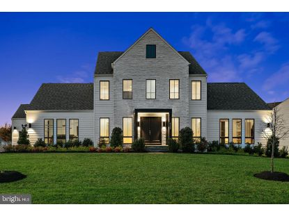 41178 ABBEY KNOLL COURT Ashburn, VA MLS# VALO423786