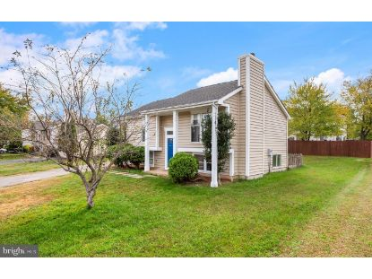 45551 MORGAN WAY Sterling, VA MLS# VALO424246