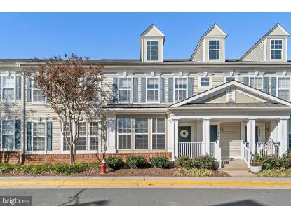 43072 ZANDER TERRACE Ashburn, VA MLS# VALO425346