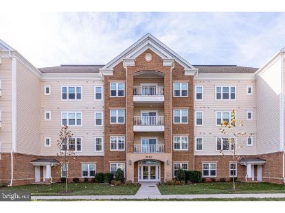 20515 LITTLE CREEK TERRACE Ashburn, VA MLS# VALO426424