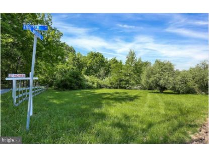 OLD WATERFORD ROAD  Paeonian Springs, VA MLS# VALO427482