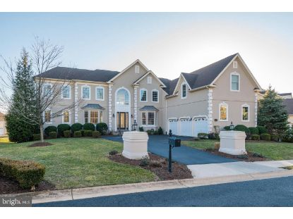43575 WORLD WOODS COURT Ashburn, VA MLS# VALO428488