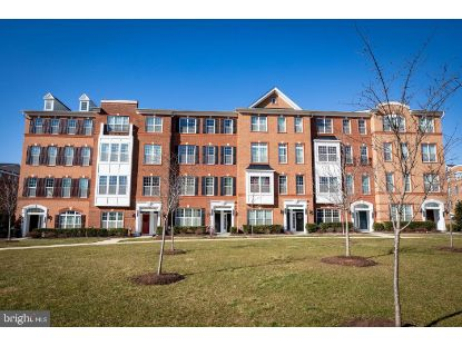 23488 BLUEMONT CHAPEL TERRACE Ashburn, VA MLS# VALO428618
