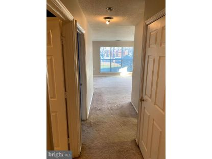 20979 TIMBER RIDGE TERRACE Ashburn, VA MLS# VALO429334