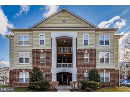 22668 BLUE ELDER TERRACE Ashburn, VA MLS# VALO429442