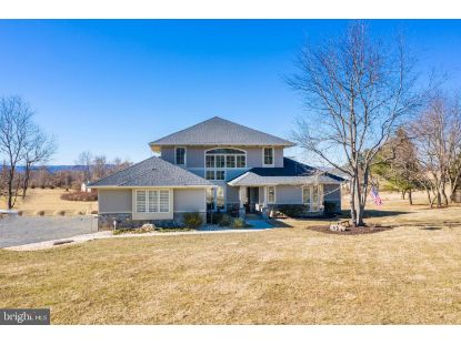 16557 CLARKES GAP ROAD Paeonian Springs, VA MLS# VALO431312