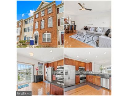 25090 LOMAX TERRACE Chantilly, VA MLS# VALO433846