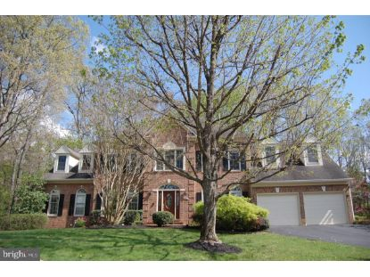20986 FLATBOAT COURT Sterling, VA MLS# VALO433864