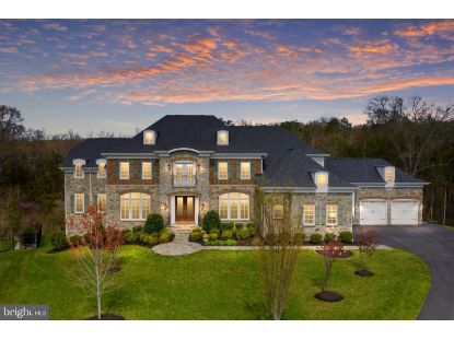 26478 BARTON PARK COURT Chantilly, VA MLS# VALO434620